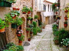 Spelo, Umbria, Italy