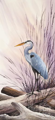 Herons Driftwood Home Painting by James Williamson