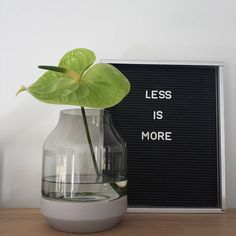 Less is more ♡ genieten van de Elevated Muuto vaas  #elevatedvase #muuto #vaas #vase #lessismore #minimalism #letterbord #quotes #quote #interieur #interior #interiors #scandinavianinterior #interiør #scandicinterior #nordicinspiration #nordicinterior #zwartwit #blackandwhite #grijs #flower #inspiratie #inspiration #homeinspiration #homeinterior #instahome #instawonen #decorate #styling #homedecor