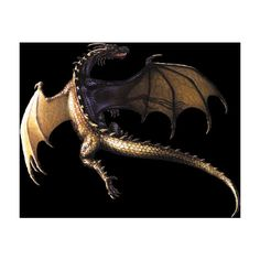 flying dragon ❤ liked on Polyvore featuring dragon, backgrounds, animals, fantasy and mystic
