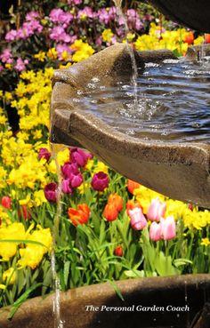 Beautiful fountain idea