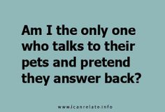 Mine totally answer back.  In fact, my pets never shut up.  They drive me crazy.