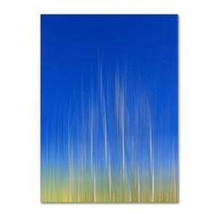 Philippe Sainte-Laudy 'Vertical Activity' Canvas Art - Overstock™ Shopping - Top Rated Trademark Fine Art Canvas
