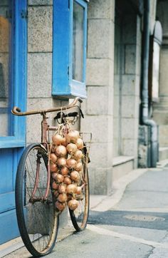 bicycle with onions