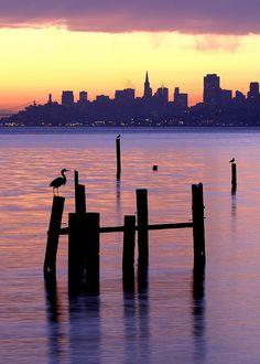 Sunrise in Sausalito looking at the San Francisco skyline.  Photo: Rob Kroenert