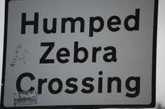 "No, you won't see a humped zebra crossing, or even a zebra being humped. In Britain, pedestrian crossings have black and white stripes, and are called ""zebra crossings"". A humped zebra crossing is where a zebra crossing also has a speed bump. - The Steel Guitar Forum :: View topic - Confusing Road Signs"