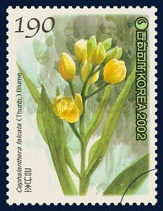 Korean Orchid Series (2nd), Cephalanthera falcata (Thunb.) Blume, Plants, Yellow, Green, 2002 11 12,   한국의 난초 시리즈(두번째묶음), 2002년 11월 12일, 2292, 금난초, postage 우표