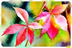 Autumn leaves - Printable Art, Instant Downloadable Images, Fine Art. by edeblas on Etsy
