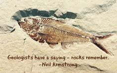 Armstrong Quote: Geologists have a saying…