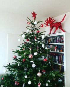 Christmas - Decoration Xmas tree red and white with nature Christmas Decorations, Holiday Decor, Xmas Tree, Red And White, Create, Nature, Home Decor, Naturaleza, Decoration Home