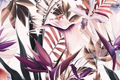 Tropical flowers and leaves vintage by mystel on Creative Market - Backgrounds - Wallpaper Colorfull Wallpaper, Wallpaper Für Desktop, Tropical Wallpaper, Macbook Wallpaper, Trendy Wallpaper, Computer Wallpaper, Flower Wallpaper, Pattern Wallpaper, Macbook Desktop Backgrounds