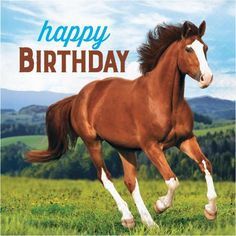 The Party Aisle Wild Horse Happy Birthday Napkins, 48 Count Happy Birthday Horse, Horse Birthday Parties, Happy 16th Birthday, Happy Birthday Wishes, Birthday Lunch, Birthday Dinners, Birthday Celebration, Birthday Clips, Birthday Memes