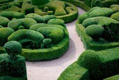 Topiary # http://www.levenshall.co.uk/Historic_Garden_james_grahme.asp