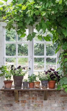 Then the orangery became a dreamy summer place in the middle of the garden Vintage Garden Decor, Vintage Gardening, Garden Cottage, Home And Garden, Conservatory Garden, Pot Jardin, Turbulence Deco, Garden Structures, Garden Gates