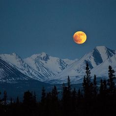 This time of year, early winter and dark skies descend on #Denali National Park in #Alaska, leaving visitors in awe of the night sky. In this photo, the #fullmoon rises over @denali.nps's snow-covered mountains. Photo by Katie Thoresen, #NationalPark Service.