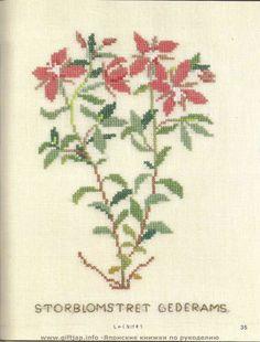 Gallery.ru / Фото #1 - Wild Flowers in Cross-Stitch - Mosca