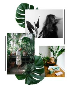 Black, white, and green moodboard. Love this as a color scheme for the home! Web Design, Email Design, Layout Design, Graphic Design, Portfolio Fotografia, New Foto, Bussiness Card, Mood And Tone, Fashion Collage