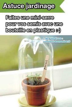 Pour faire une serre pour vos semis, utilisez une bouteille de plastique coupée.