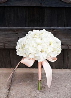 """Flowergirl bouquet - Love the simplicity of a single Hydrangea bloom. The simple shoelace bow is """"just"""" enough for pretty design. Cheap Wedding Bouquets, Hydrangea Bouquet Wedding, Bridesmaid Flowers, Bride Bouquets, Bridal Flowers, Floral Wedding, Single Flower Bouquet, Bridesmaids, Purple Bouquets"""