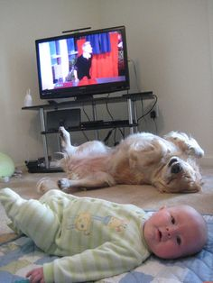 Send us photos of your cute kids!!!!!!AWESOME!!!TICKLE, TICKLE SWEET  INNOCENT BABY... <3 TICKLE ,TICKLE, CUTE DOGGY... <3