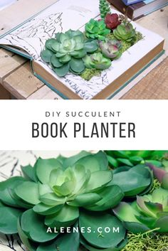Make a succulent planter from a BOOK! CLICK for the how-to ... #TackyGlue #Aleenes #crafts #DIY #HomeDecorDIY #HomeDecor #DIYDecor #DIYHomeDecor