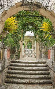 Vizcaya museum gardens and the sunken garden Cruise Miami, Miami Florida, South Florida, Places In Florida, Vacations To Go, Abandoned Amusement Parks, Museum, Meteor Garden 2018, Florida Travel