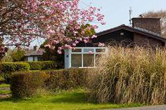 """Cherry Blossom and Residential Bungalows"", Kilcornan House, Clarenbridge, Co Galway. Bungalows, Cherry Blossom, Ruffles, David, House Styles, Plants, Home Decor, Homemade Home Decor, Decoration Home"