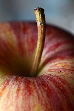 sixohthree: Apple Close Up (by Edgar Pereira) Apple, Fruit, Healthy, Fruit Photography, Close Up Photography, Creative Photography, Fruit And Veg, Fruits And Veggies, Fresh Fruit, Fresh Apples, Food Styling, Close Up Art