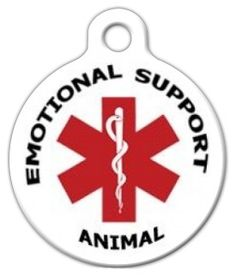 1000 Images About Emotional Support Animal On Pinterest