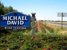 Phillips Farms-Michael David Winery- Lodi, California --best food, grocery & wine!!