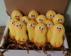 12 Chocolate Covered Nutter Butter Chicks! Perfect for Easter, Spring, or Baby Showers on Etsy, $16.50