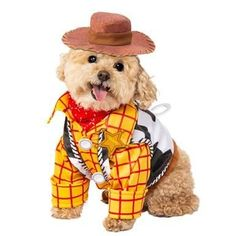 Woody Costume -  We all know how cute your puppy looks in her costume. But there are some things to bear in mind before selecting the most appropriate outfit for the dog. Nowadays, many people liven up their pets on special occasions such as for instance New Year's Eve or holidays. Choosing dog clothes is often fun, and seeing your pet in numerous costumes can make everyone in the household happy. However, there are several points to think about whenever choosing clothes for the dog. What…