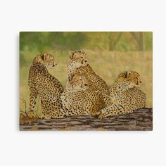 Afrigraphix Shop | Redbubble Cheetah Cubs, Leopard Cub, African Animals, African Safari, Christmas Puppy, Game Reserve, Big Cats, Lions, Cotton Canvas