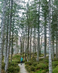 Finally got round to writing about this gorgeous little trip. Have a  at www.travelbytummy.com  #travelbytummy #kosykinatravels  #travelguide #travelplanning #weekendaway #walkingweekend #scotland #trip #holiday #hyggeholiday #hygge #traveleurope #ukholiday