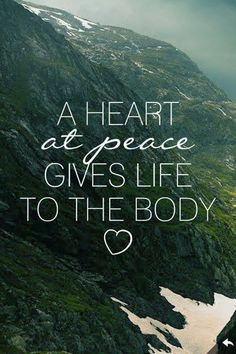a heart at peace gives life to the body <3
