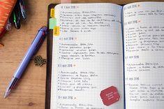 Algunas cosas extra que apunto en mi registro diario