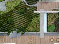 如此极致的景观,不得不服 Landscape And Urbanism, Landscape Elements, Urban Landscape, Landscape Design, Plant Design, Garden Design, Roofing Options, Green Architecture, Rooftop Garden