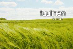 tuulinen ~ windy