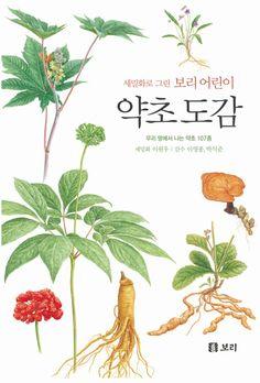 약초 도감 Heart Anatomy, Korean Language, Chinese Medicine, Medicinal Herbs, Food Design, Web Design, Natural Cures, Health Diet, Botany