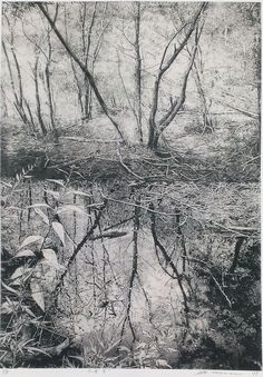 TAKASE Motohiko(高瀬元彦 Japanese) Water 2011 etching on gampi via