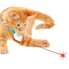 Cat Toys Color Random!!!1 Pc Plastic Pet Toys Cats Mouse-like Toy Rabbit Stick Long Pet Funny Toy New Cat Playing Toy Pet Accessories To Prevent And Cure Diseases
