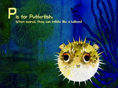 Best Android Apps for kids: A to Sea alphabet app is beautiful