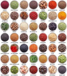 large collection of different spices and herbs isolated on white background Learn English Grammar, English Vocabulary Words, Learn English Words, English Language Learning, English Writing, English Study, Teaching English, Food Vocabulary, Grammar And Vocabulary