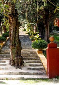 belles demeures paca monaco neo - 5