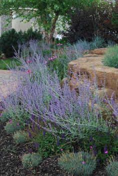 paisaje ecléctico por Jay Sifford Garden Design