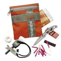 http://www.battleorders.co.uk/gerber/bear-grylls-basic-survival-kit-22-31-000700.html