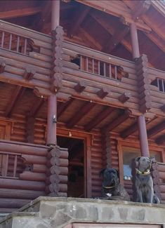 Great View, Log Homes, Dog Friends, Greece, Pergola, Outdoor Structures, Timber Homes, Greece Country, Wood Homes