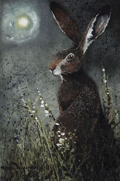 """""""Moongazer"""" by Maggie Vandewalle - Hase Art And Illustration, Illustrations, Street Art, Into The Fire, Rabbit Art, Jack Rabbit, Bunny Art, Totems, Animal Paintings"""