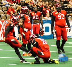 Tommy Grady fired eight touchdown passes and the Jacksonville Sharks' defense forced five turnovers on downs on Saturday night, carrying the Sharks to a 54-35 victory over the Tampa Bay Storm in front of 10,324 on Sea Best Field at the Jacksonville Veterans Memorial Arena. http://sumo.ly/mAWO