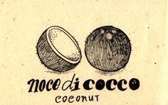 Learning Italian Language ~ Noce di cocco (coconut) IFHN